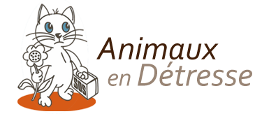 http://www.animaux-en-detresse.com/chat2/files/logo3.png